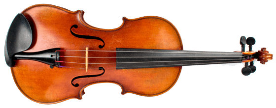 Photo of a violin
